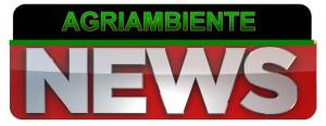 ASSEMBLEA NAZIONALE @ San Giuliano Milanese | Cassino | Lazio | Italia